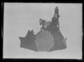 Ringbrynja rester av ärmar - Livrustkammaren - 60492.tif