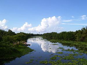 Dorado, Puerto Rico - La Plata River in 2007