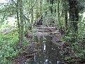 River Colne in Colney Heath - geograph.org.uk - 1037003.jpg