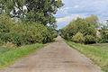 Road between Běchárky and Běchary.jpg