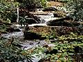 Roaring Fork Falls Black Mountain Campground Pisgah Nat Forest NC 4335 (37916997252).jpg