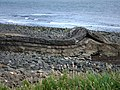 Rock feature near Dunstanburgh Castle - geograph.org.uk - 924336.jpg
