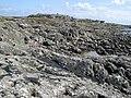 Rocky shore - geograph.org.uk - 1578271.jpg