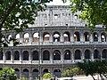 Roma - Colosseum - between the trees Amphitheatrum Flavium - panoramio.jpg