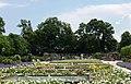 Rosarium Baden Doblhoffpark Schlossparterre 05.jpg