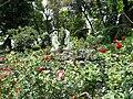 Rosas del Tepeyac.JPG