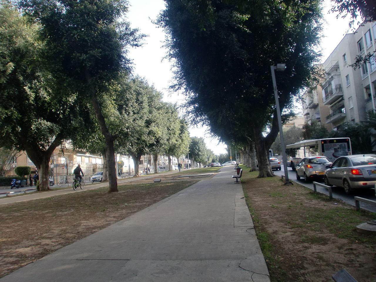 Rothschild Boulevard Tel Aviv.JPG