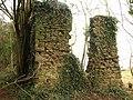 Ruin near Coleford - geograph.org.uk - 1723742.jpg