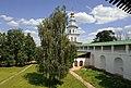 Russian birch (4737035381).jpg