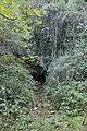 Söğütlü Mağara1.jpg