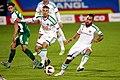 SV Mattersburg vs. SK Rapid Wien 2015-11-21 (042).jpg