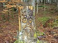 Sad Face in Wooplaw Woodland - geograph.org.uk - 760196.jpg
