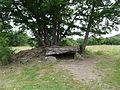 Saint-Nectaire dolmen Saillant.JPG