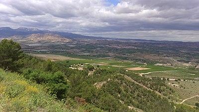 Saladares del Guadalentín desde Carrascoy 2.jpg