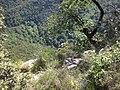 Sant Aniol d'Aguja des del Pujant d'en Llebre (maig 2011) - panoramio.jpg
