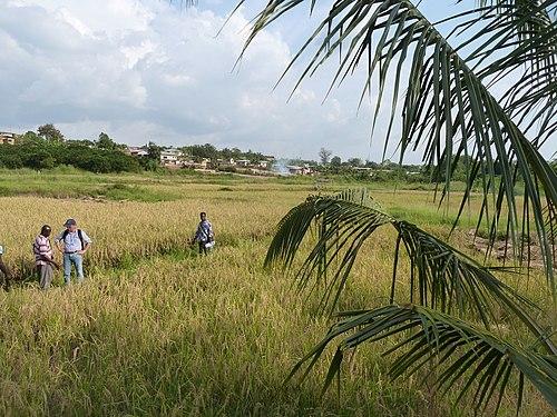 Ashanti Region - Wikiwand