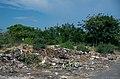 Scenes of Cuba (K5 02120) (5977849090).jpg