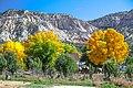 Scenic fall colours along Utah Hwy 14 - (22419095489).jpg