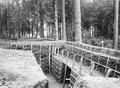 Schützengraben im Werk Wylerholz - CH-BAR - 3241732.tif