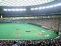 Seibu Dome.JPG
