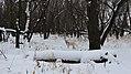 Selkirk Park, Manitoba (494798) (11676347533).jpg