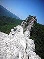 Seneca Rocks Summit.jpg