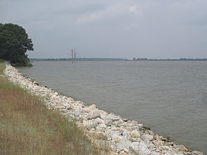 Francis C. Thompson - Part of the shoreline of Poverty Point Reservoir, a large lake near Delhi, Louisiana