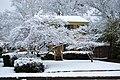 Shreveport snow DSC 0031 (4350649371).jpg