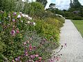 Sizergh Castle garden - panoramio.jpg