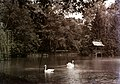 Soponya-Nagyláng 1902, Zichy kastély parkja. Fortepan 4355.jpg