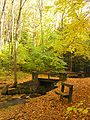 South Chagrin Reservation.jpg
