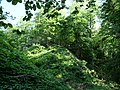 Spiegelberg Burgstelle Thundorf P1030236.jpg