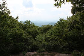 Springer Mountain view.JPG