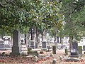 St. Peters Cemetery (3142684880).jpg