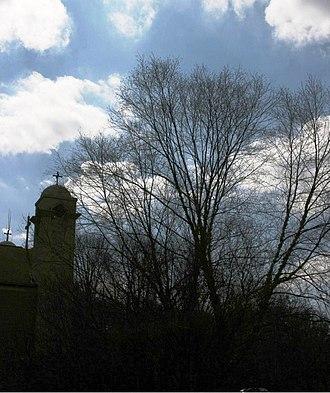 Woodbury, Nassau County, New York - A view of St. Abraam Coptic Orthodox Church in Woodbury
