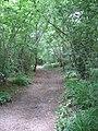 Stane Street - geograph.org.uk - 189663.jpg