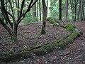 Steinerne Rinne Erasbach-2.JPG
