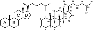 Bile acid - IUPAC recommended ring lettering (left) and atom numbering (right) of the steroid skeleton. The four rings A-D form a sterane core.