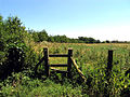Stile on the Footpath to Querns, near Goring Heath - geograph.org.uk - 26734.jpg