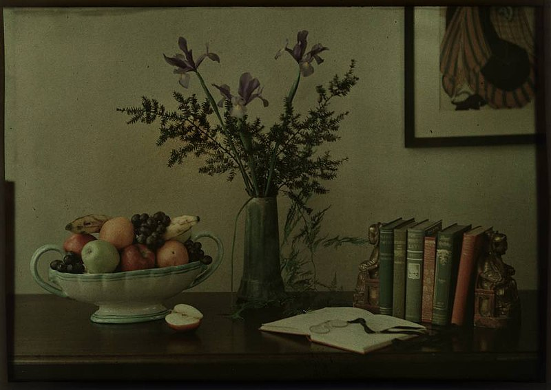 File:Still-life with fruit bowl, flowers and books (2677417135).jpg