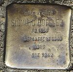Stolperstein Offenburg Sigmund Hofeler.jpg