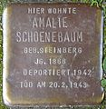 Stolpersteine Köln, Amalie Schoenebaum (Nußbaumerstraße 11).jpg