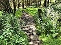 Stone Gatepost - geograph.org.uk - 1412251.jpg