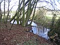 Stream near Cuddington - geograph.org.uk - 370263.jpg