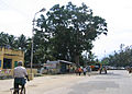 Street around Palani Temple6.jpg