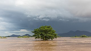 Submerged tree under a dark sky in Si Phan Don.jpg
