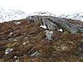 Summit, Meall Feith Dhiongaig - geograph.org.uk - 1172159.jpg