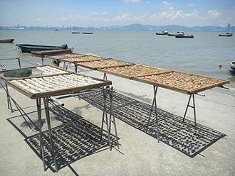 Deep Bay, China - Sun dried oysters in Lau Fau Shan looking towards Shenzhen