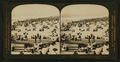 Sunday morning at the Long Beach, California, U.S.A, from Robert N. Dennis collection of stereoscopic views.png
