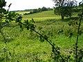 Sunnydown - geograph.org.uk - 856277.jpg